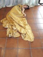 DS: Gold Dress 20 by dazzle-stock
