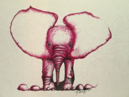 Pink Elephant 17 by DVanDyk