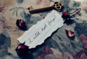 I Will Not Forget by pinkparis1233