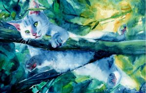Summer cat by Catherine-PL