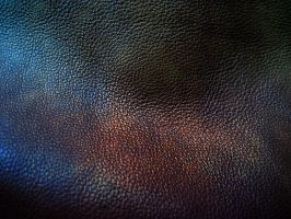 leather texture - 4 by DiZa-74