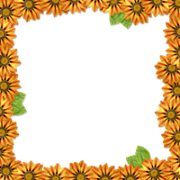 Flower Frame Overlay by HGGraphicDesigns