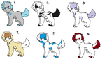 Dog Adopts :Open: by Moozer-Adopts