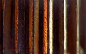 Abstract macro 2 by Spiteful-Spirit