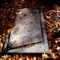 From Beyond the Grave by StephGabler