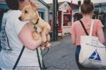 Pete goes to Rockport. by angelaCRUNK