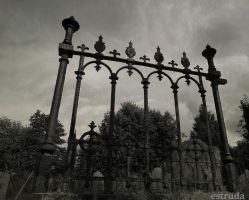 Cemetery Railings by Estruda