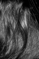 Hair Texture II by KW-stock
