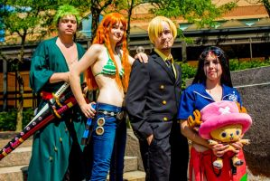 One Piece - The Crew by dendensushi