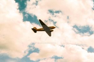 EAA Airplane - 8 by nejicanspin