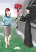 HP-Valentine's Day by Aedua