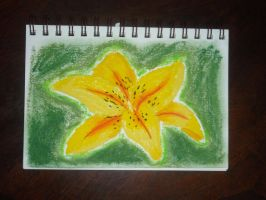 The Yellow Lily by Squiggy13