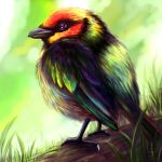 Bird Practice Layer Paint by charfade