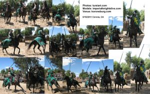 Green Knight Stock Pack 1 by tursiart