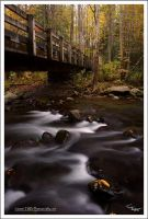 Under The Bridge, GSMNP by TRBPhotographyLLC