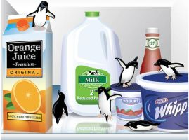 Penguins in my fridge -vector by penguinluv4ever
