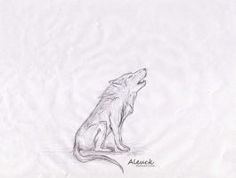 Wolf Sketch by Aleuck