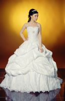 bride wedding dress stock 4 by Luria-XXII