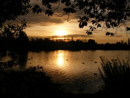 Sunrise over the Slough by lupus53