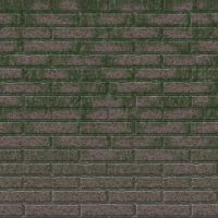 Nasty Green Dirty Brick Wall by invaderjes