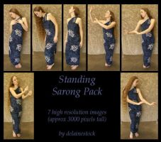 Standing Sarong Pack by delainestock