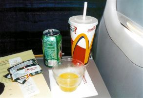Quintessential Airplane Meal by calebrw