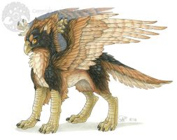 Griffon - Avian Companion by Shadow-Wolf