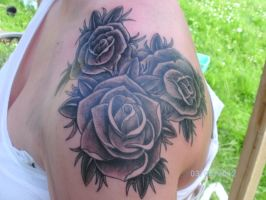 Roses again by zok4life