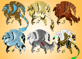 Griffon adoptables CLOSED by TaraviAdopts