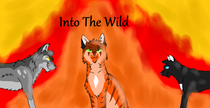 warrior cats into the wild by Danny-Senpai