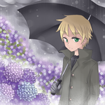 APH - Hydrangea and the rain by Mi-chan4649