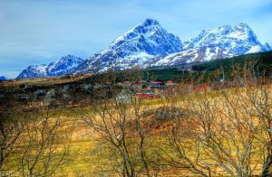 Lofoten Islands 9 by canbayram