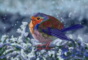 winter featherball by nosoart