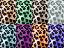 leopard multi-print by wildhearted