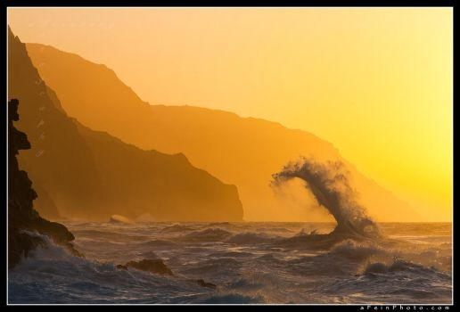 Neptune's Tongue by aFeinPhoto-com