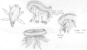Lotad and Lombre Concepts by StellarWind