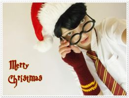 Harry Potter - Merry Christmas by Esarina