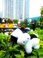 Cow's Story 02 by reiling-lina