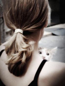 The kitten and the girl by anneclaires