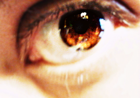 Brown Eye by AngeliqueLuv