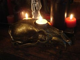 Bear skull candle holder by missmonster