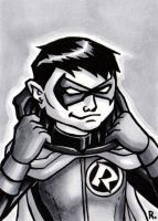Robin Sketch Card by TheRigger