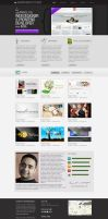 One Page Portfolio Template by princepal