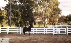 Riding Lesson by PintabianDreamer1222