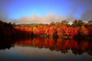 PEEC Front Pond in Autumn by froggynaan