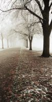 Pea-souper park 2 by Dosulan