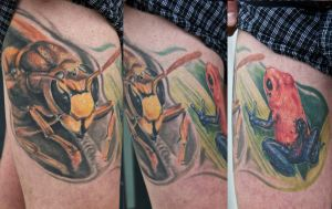 hornet and frog healed by graynd