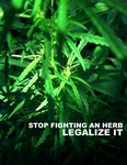 Legalize It - Herb by eternalrabbit