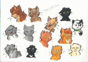 Warrior cats by Klaracrystalpaws