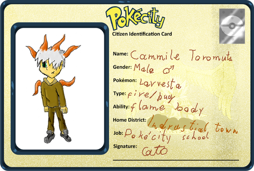 Cammile-pokecity app by pit-the-scorpio